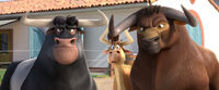 Valiente and the gang watching Ferdinand