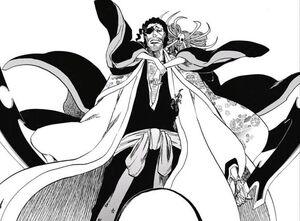 Shunsui Katen Kyokotsu appears