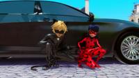 Animan - Cat Noir and Ladybug 37
