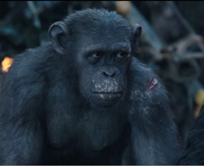 Ash (Planet of the Apes)