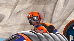 Paw Patrol Zuma shocked and looked at the tub