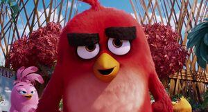 Angry-birds-disneyscreencaps.com-1079