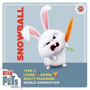 Snowball card