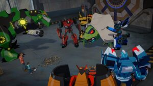 Bee Team, Russell, Denny and Blurr Arrested the Springload