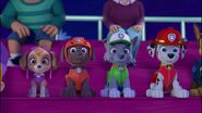 Paw Patrol Puppies in a row (Skye Zuma Rocky Marshall and Chase)