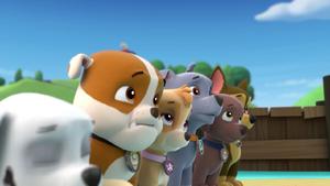 Paw Patrol (Rubble, Skye, Rocky, Zuma and Chase) Screenshot 2016-12-12-14-29-03