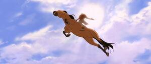 Spirit's leap of faith