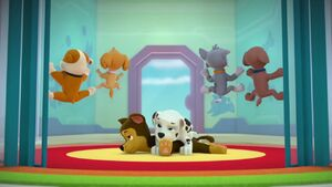 PAW.Patrol.S02E02.Pups.Save.the.Penguins.-.Pups.Save.a.Dolphin.Pup.720p.WEBRip.x264.AAC.mp4 000163363