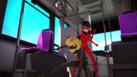 Animan - Cat Noir and Ladybug 34