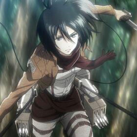 Mikasa-3846