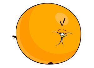 Orangebird02