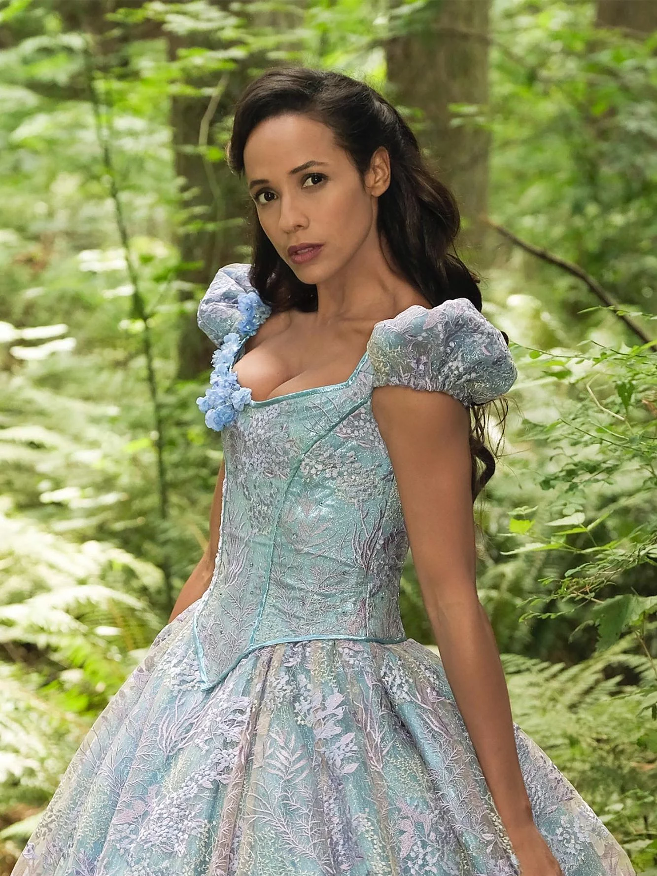 Cinderella (New Enchanted Forest)
