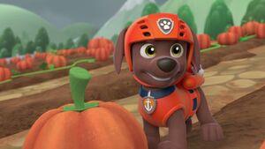 PAW.Patrol.S01E15.Pups.Make.a.Splash.-.Pups.Fall.Festival.720p.WEBRip.x264.AAC 1136102