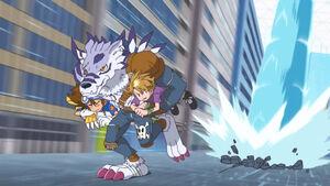 WereGarurumon carries Agumon, Taichi and Yamato