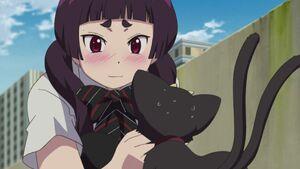 Izumo playing with Kuro