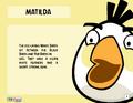 Matilda Toy Care