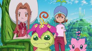 Mimi, Palmon, Sora and Biyomon