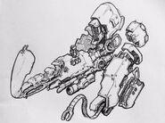 R5 anatomy