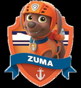 Zuma (Paw Patrol) 2