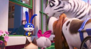 Secretlifeofpets2-animationscreencaps.com-6980