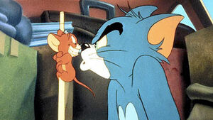 Tom Cat glaring angrily at Jerry Mouse