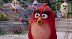 Angry-birds-disneyscreencaps.com-895