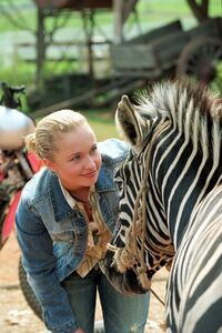 Hayden Panettiere as Channing Walsh in Racing Stripres 3420