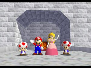 Mario Peach and Toads