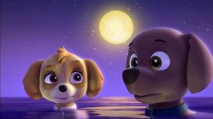 Skye And Zuma Become Mer-Pups - PAW Patrol