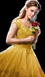 Belle 2017
