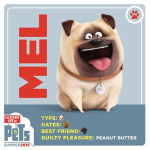 Mel (The Secret Life of Pets)'s card