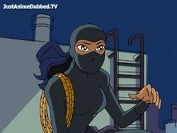 Viper stealth.jpg
