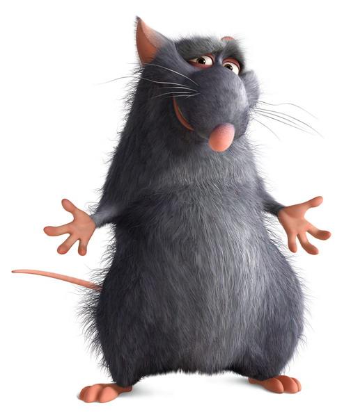 Django (Ratatouille)