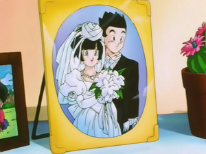Gohan and Videl wedding pictures