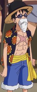 Luffy55