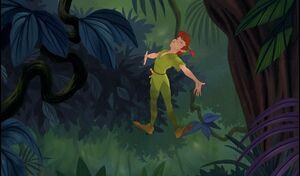 Peter Pan Crow