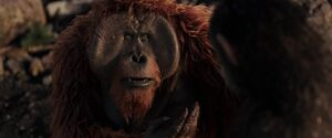 War For The Planet Of The Apes 2017 Screenshot 3872