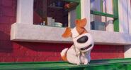Secretlifeofpets2-animationscreencaps.com-1102