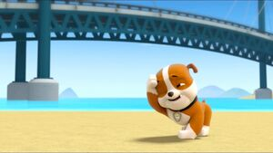 Paw Patrol What A WipeOut Rubble