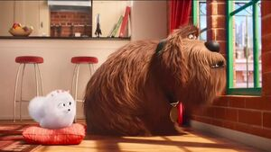 Gidget and Duke (The Secret Life of Pets) in Happy Meal commerical