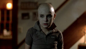 Tommy-Head-Shaved