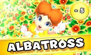 DaisyAlbatross