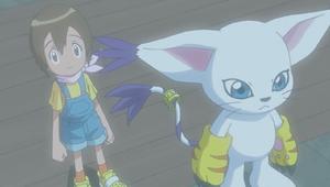 Ep 34 - Hikari and Gatomon