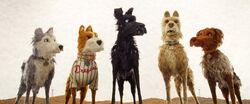 Isleofdogs-animationscreencaps.com-1053.jpg
