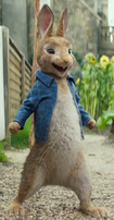 Peter rabbit dressed up