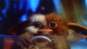 Gizmo-First