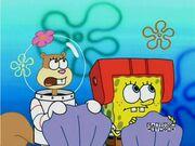 Boy, Look at Patrick, SpongeBob
