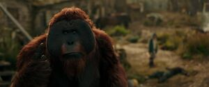 War For The Planet Of The Apes 2017 Screenshot 1018
