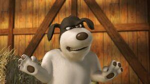 Duke The Sheepdog.jpg