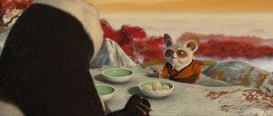 Kung-fu-panda-disneyscreencaps.com-6793